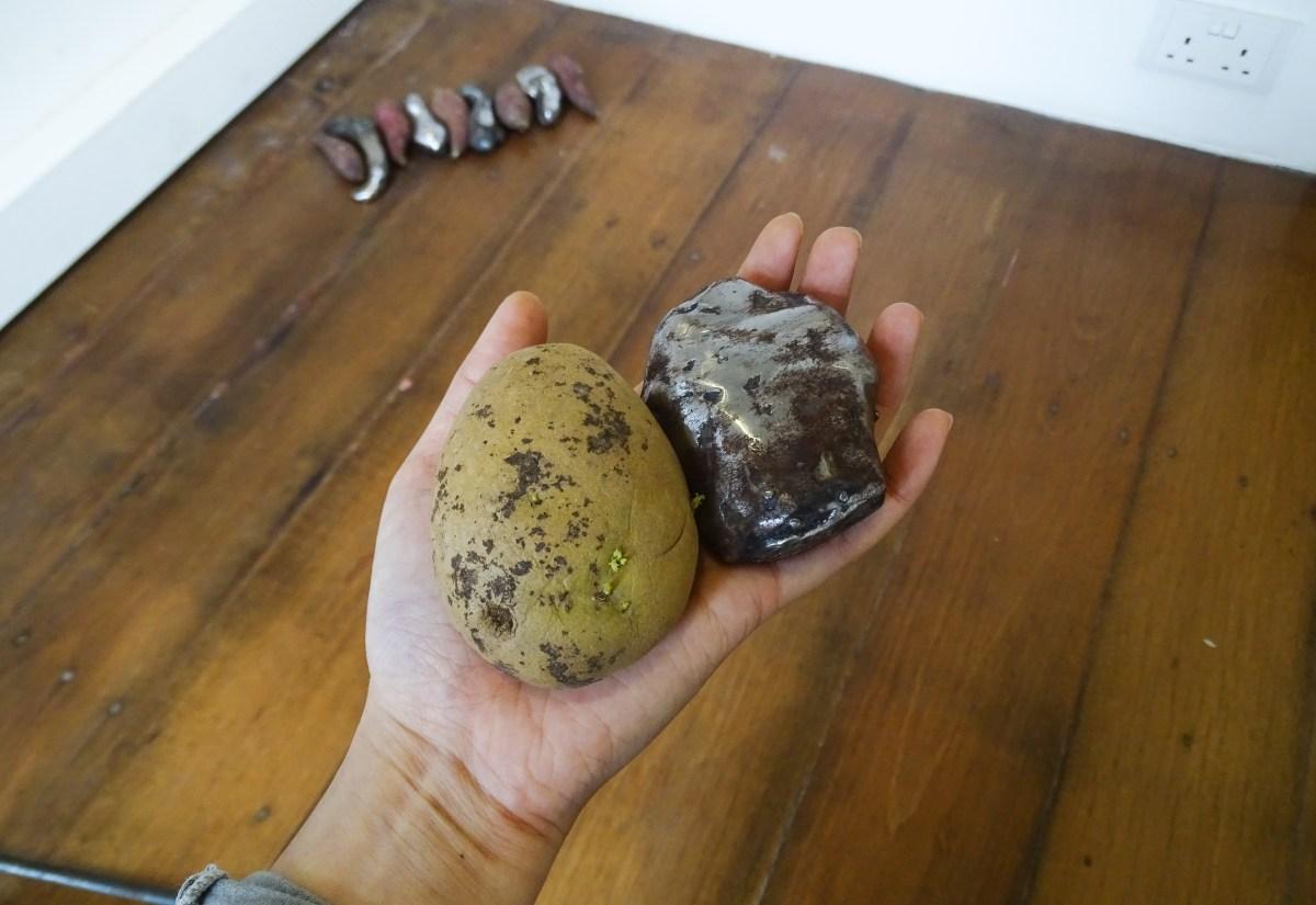 Naked Potatoes rusted budding Tay Ining 20150614-141043