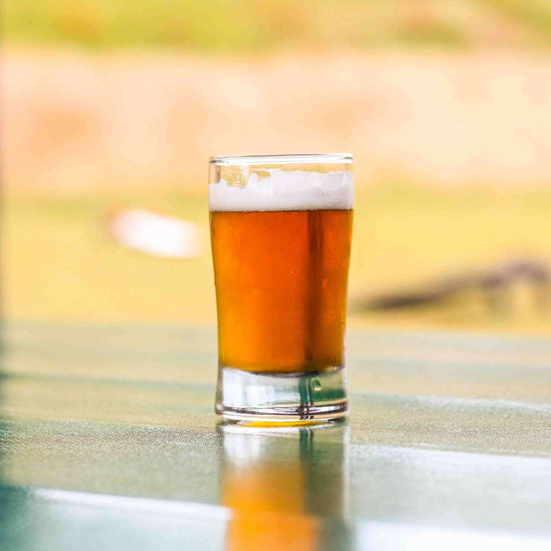 amber colored beer called King T in a tasting glass on a picnic table.