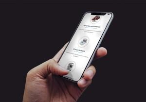 Toltec Scale Website iPhone