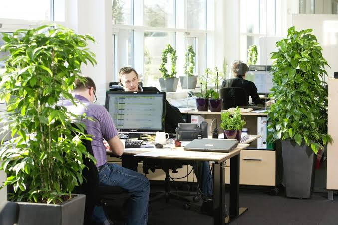 Increasing performance with plants