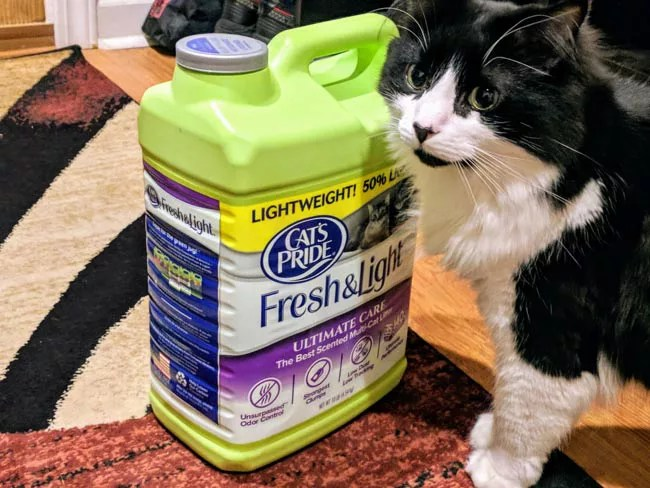 Chief poses on a jug of Cat's Pride Cat litter. Of course, I missed him loving all the over the container like it contained treats or something!