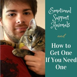 What is an Emotional Support Animal and what do they need?
