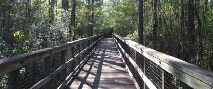Blackwater nature walks and pavilions