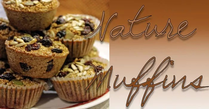 Nature Muffins - Baked Steel Cut Oatmeal