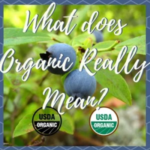 Label This! What does the Organic Label really mean?