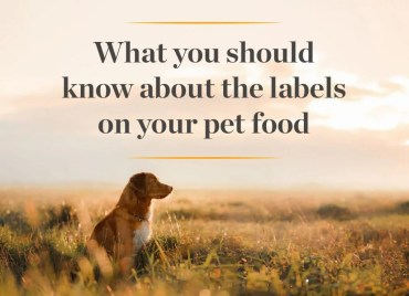 What you should know about pet food labeling