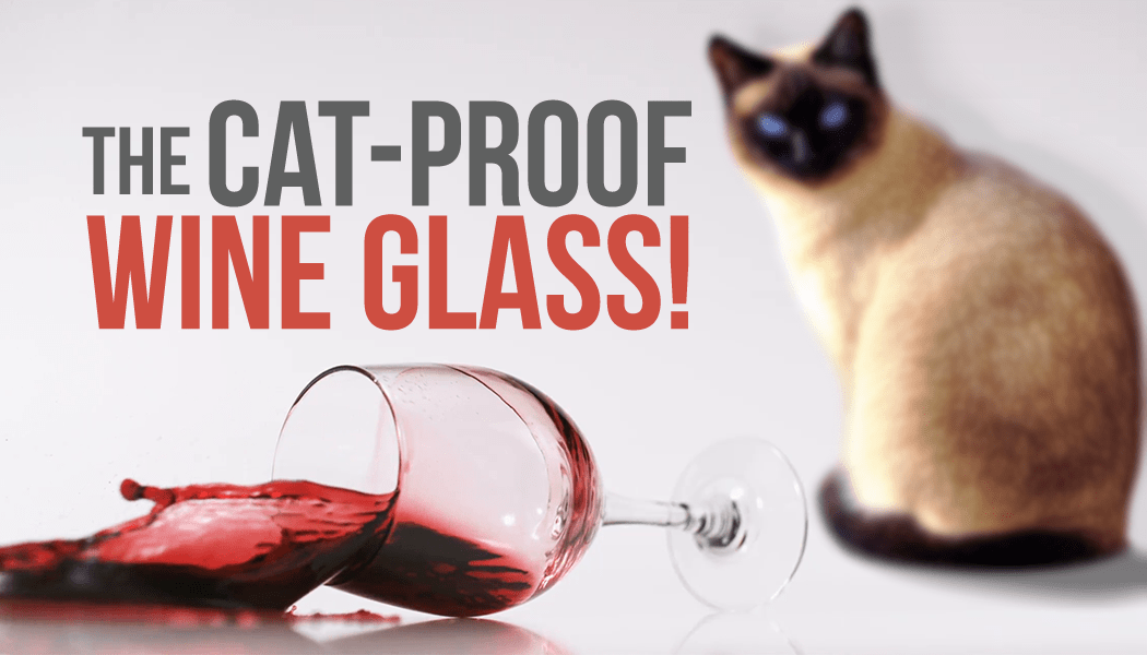 cat-proof wine glasses