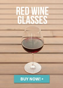 Unbreakable red wine glasses which glass which wine