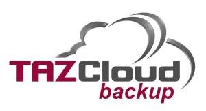 disaster recovery backup services michigan