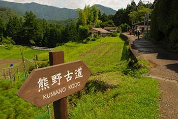 kumano-kodo-trail