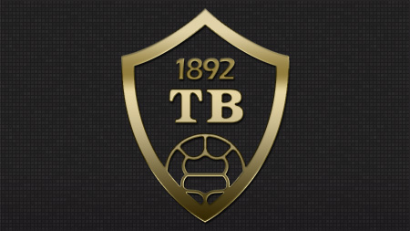 tb-bg-2013-gold-web