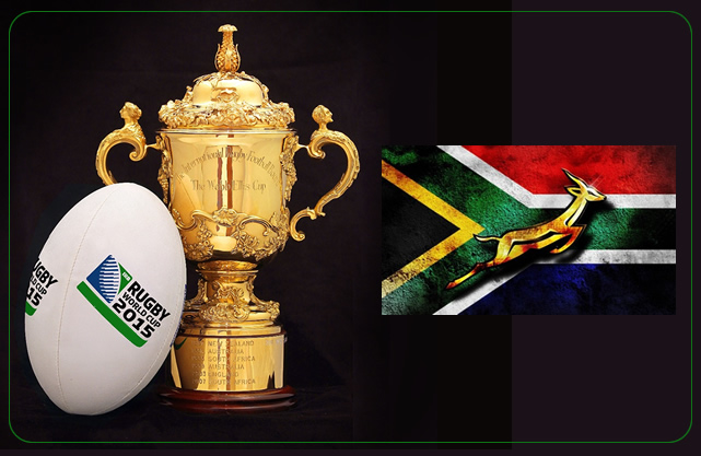 Support The Springbok Team in The 2015 Rugby World Cup