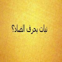 اسم بلاد بحرف الضاد