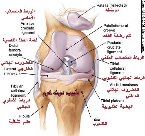 نتيجة بحث الصور عن أهم أسباب ألم الركبة