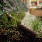 Das Gras grünt in Waldesruh