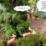 In Waldesruh wird es keinen Premiumwanderweg geben