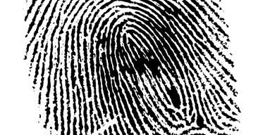 Police | Pinellas County Sheriff | Police Explorer