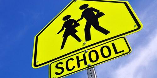 School | School Crossing | School Crossing Guard