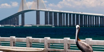 Sunshine Skyway Fishing Pier | Sunshine Skyway Bridge | Sunshine Skyway