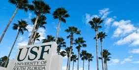 University f South Florida | Education