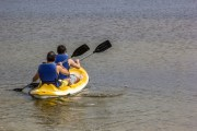 Paddle the Bayou in Oldsmar