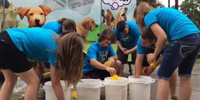 Pinellas Animal Services | Teen Volunteers | Pets Cats Dogs
