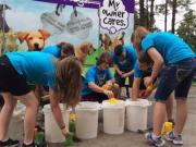 Pinellas Animal Services Seeks Teen Volunteers