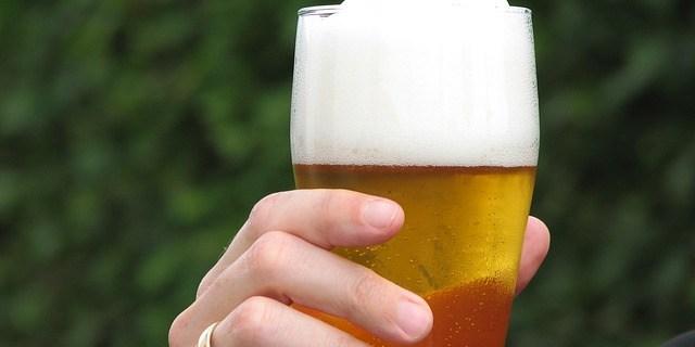 Beer   Beer Fest   Beer Run