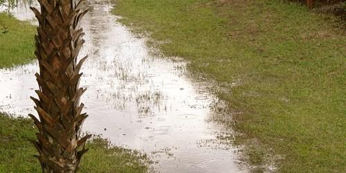 Tropical Storm   Rain   Flooding