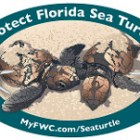 Sea Turtle | FWC Decal | Sea Turtle Decal