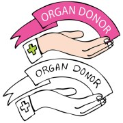 Pinellas Organ Donor Rate Reaches 62 Percent in July