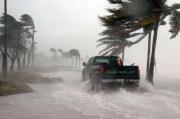 Tampa Bay Area Public Schools Closed Today