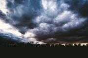 Hernando under Tropical Storm Watch