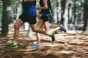Run the Croom Hiking Trail in Brooksville