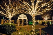 Pinellas Switches on Holiday Lights in the Gardens