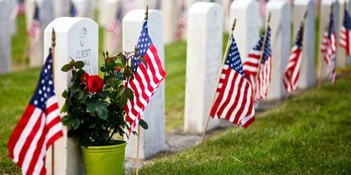 Veterans Day | Veterans | Veterans Services