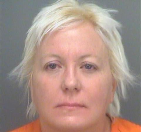 Janet Schreiner | Pinellas Sheriff | Arrests