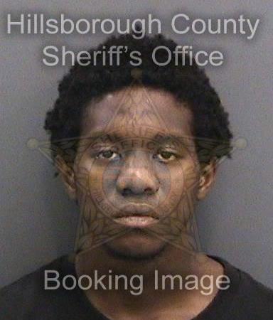 Deante Small | Hillsborough Sheriff | Arrests