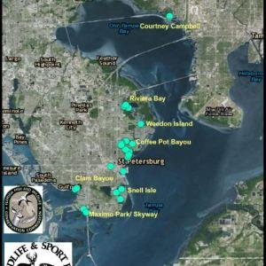 Dead Pelicans Map | FWC | Environment