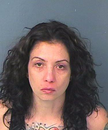 Valerie Michelle Valvo | Hernando Sheriff | Arrests