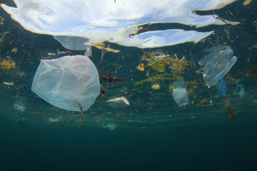 Ocean Plastic Pollution | Environment | Ecology