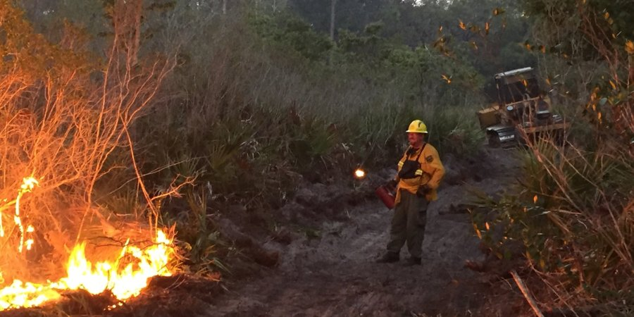Pasco Campground Fire | Florida Forest Service | Widfires