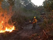 Firefighters Continue to Fight Pasco Wildfires