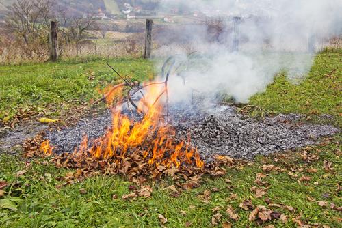 Yard Waste | Fire | Burn Ban
