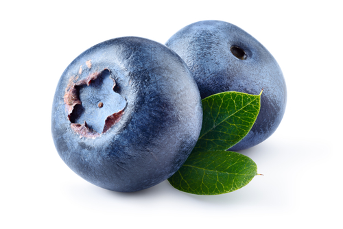 Florida Blueberry Festival | Brooksville | Events