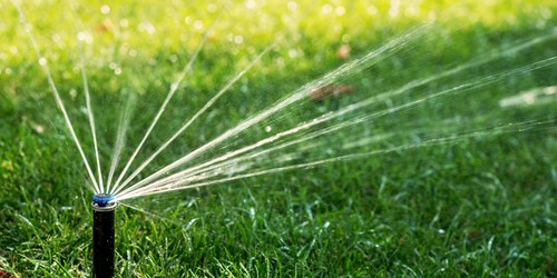 Lawn Watering | Environment | Water Shortage