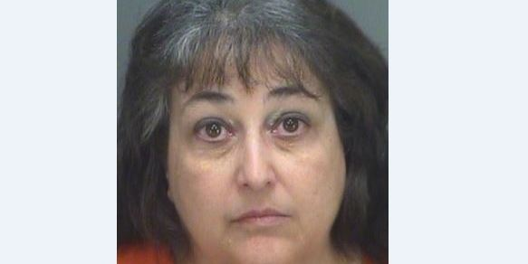 Michele Roe | Pinellas Sheriff | Arrests