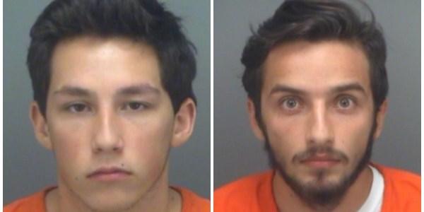Pinellas Sheriff   Crime   Arrests