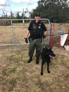 Deputy Guerra and K9 Bandit | Hillsborough County Sheriff | Arrests