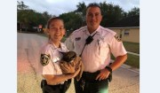 Hillsborough Deputies Scoop Puppy to Safety